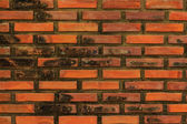 Brick Wall texture. — Stock Photo