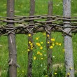 Old rural fence - Stock Photo