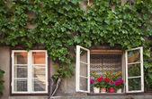 Old rural windows — Stock Photo