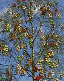 Wielkanoc drzewo — Zdjęcie stockowe