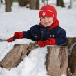 Stock Photo: Boy in winter sitting inside hemp