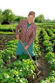 Woman shoots potato spud — Stockfoto