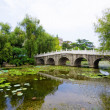 Stock Photo: Stone bridge in Asigarden