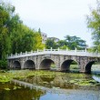 Stone bridge in an Asian garden — Stock Photo
