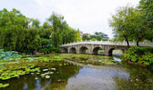 Stone bridge in an Asian garden — Stock Photo