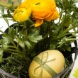 Easter egg and buttercup - Stock Photo