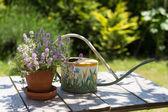 Regador e flores — Foto Stock