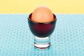 Brązowy jajko — Zdjęcie stockowe