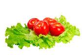 Tomatoes on lettuce — Stock Photo