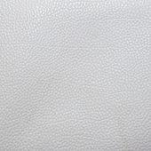 White leather texture — Stock Photo