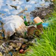 Stock Photo: Environmental contamination