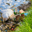 Environmental contamination — Stock Photo