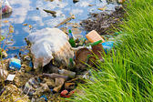 Environmental contamination — Stock Photo