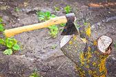 Yxa att klippa träd — Stockfoto