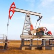 Oil pump — Stock Photo #29173665
