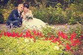 Happy groom and bride wedding walk in the park — Stock Photo