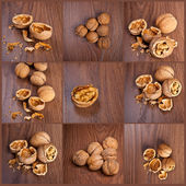 Collage walnuts on a wooden background — Stock Photo
