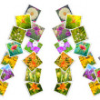 Summer word of greeting cards with flowers — Stok fotoğraf