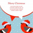 Winter style vector of a cute birds wearing christmas hat — Vettoriali Stock