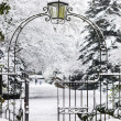Entrance Gate to Snowy Park — Stock Photo #21687417