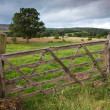 Wooden Farm Gate, England — Stock Photo #21794101