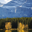 Autumn Trees Reflected on Lake with Rocky Mountains in Banff — Stock Photo
