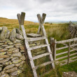 Traditional Ladder Stile — Stock Photo