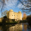 Stock Photo: Nunney Castle, Somerset, England, UK