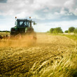 Tractor ploughs field — Stock Photo