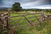 Portão de madeira fazenda, inglaterra — Foto Stock