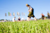 Music Festival Field — Stock Photo