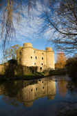 Nunney Castle, Somerset, England, UK — Stock Photo