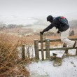Walking in the snow - Stockfoto