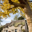 Autumn Cottage - Stock Photo