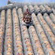 Shisa Statue on a Rooftop in Japan - Stock fotografie