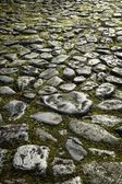 Old Cobblestone Pavement — Stock Photo