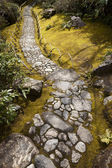 Stone Path in Mossy Garden — Stock Photo
