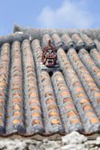 Shisa Statue on a Rooftop in Japan — Stock Photo