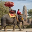 Elephant Ride, Ayutthaya - Stock Photo