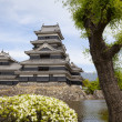 Matsumoto Castle, Japan - 图库照片