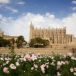Palma Cathedral — Stock Photo
