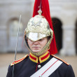 Soldier from Household Cavalry at Horse Guards Parade - Stock Photo