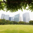 Tokyo skyscrapers views from park — Stock Photo #22528985