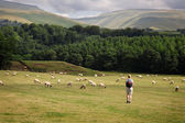 Walking in Cumbria — Stock Photo