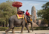 Elephant Ride, Ayutthaya — Stock Photo