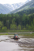 Tractor Prepares Rice Paddy, Hakuba, Japan — Stock Photo