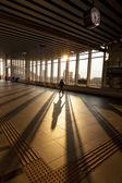 Silhouette of Passenger in Modern Train Station — Stock Photo