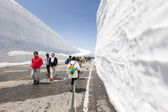 Yuki-nie-ohtani doliny śniegu w alpach japońskich — Zdjęcie stockowe
