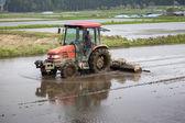 Tractor Prepares Rice Paddy — Stock Photo
