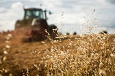 Traktor plöjningsceremonin fältet — Stockfoto
